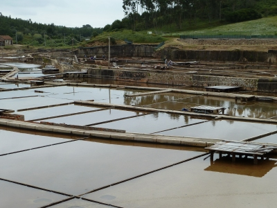 Rio Major Saltworks