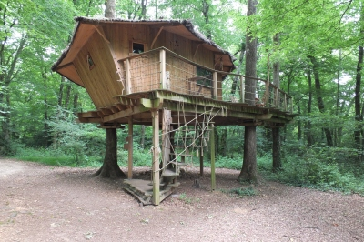 Treetop hotel at Magne