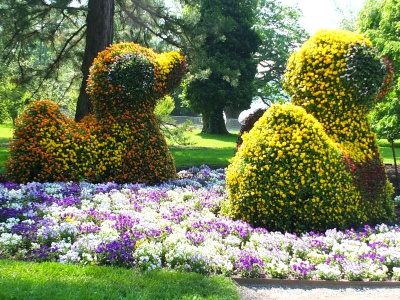 mainau gardens spring bedding